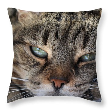 Ponder Throw Pillow by Susan Smith