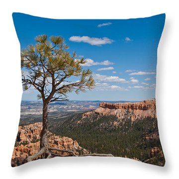 Throw Pillow featuring the photograph Ponderosa Pine Tree Clinging To Life On Canyon Rim by Jeff Goulden