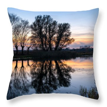Ponds In Lomna 2 Throw Pillow