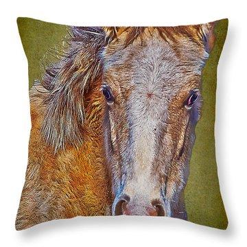Pony Portrait  Throw Pillow