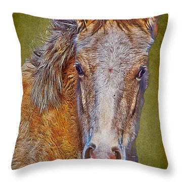 Pony Portrait  Throw Pillow