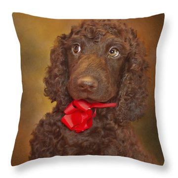 Throw Pillow featuring the photograph Pooka  by Brian Cross