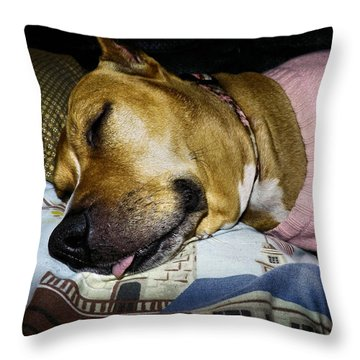Pooped Pup Throw Pillow by Robyn King
