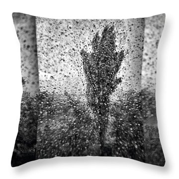Poplars In The Storm Throw Pillow