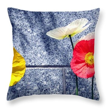Throw Pillow featuring the digital art Poppies And Granite by Will Borden