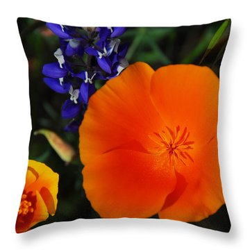Poppies And Lupine Throw Pillow by Lynn Bauer