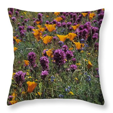 Poppies And Owl Clover Throw Pillow