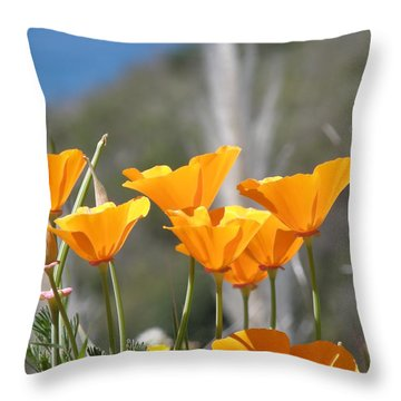 Poppies Throw Pillow by Bev Conover