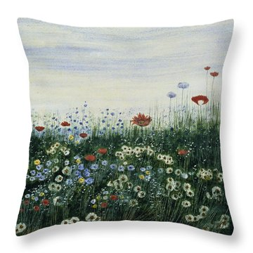Poppies, Daisies And Other Flowers Throw Pillow