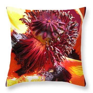 Poppies Gone Wild 4 Throw Pillow by Brooks Garten Hauschild