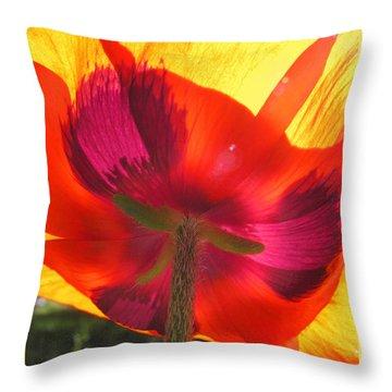 Poppies Gone Wild  Throw Pillow
