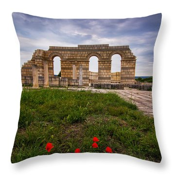 Poppies In The Ruins Throw Pillow by Eti Reid