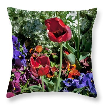 Throw Pillow featuring the photograph Poppies by Mae Wertz