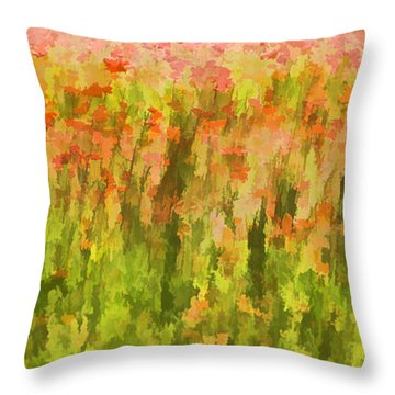 Poppies Of Tuscany IIi Throw Pillow