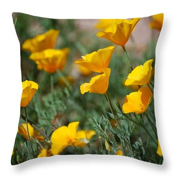 Throw Pillow featuring the photograph Poppies by Tam Ryan