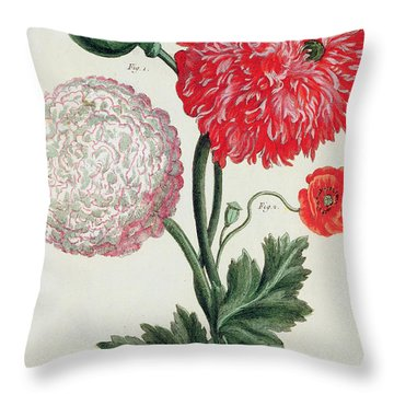 Poppy Throw Pillow by Basilius Besler