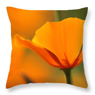 Poppy Bliss  Throw Pillow