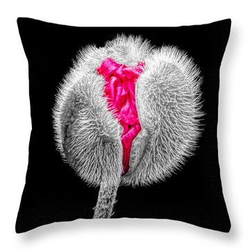 Poppy Emerging Throw Pillow