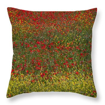 Poppy Field Throw Pillow by Bob Phillips