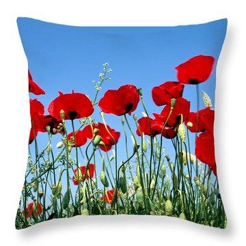 Poppy Flowers Throw Pillow by George Atsametakis