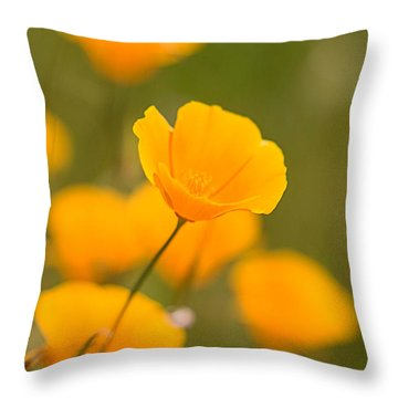 Throw Pillow featuring the photograph Poppy I by Ronda Kimbrow