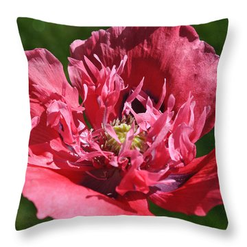 Poppy Pink Throw Pillow