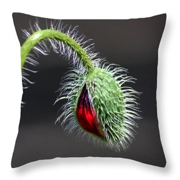 Poppy Red Lamp Throw Pillow