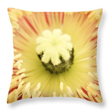 Poppy Sunburst  Throw Pillow by Priya Ghose
