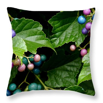 Porcelain Berries Throw Pillow by Lisa Phillips