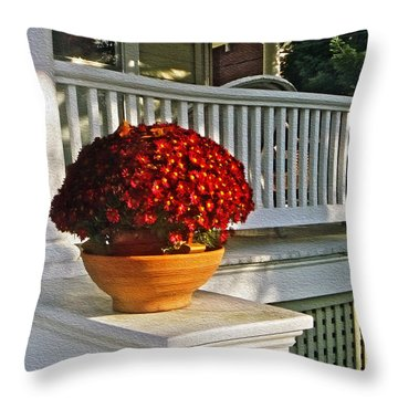 Porch Beauty Throw Pillow by Brian Wallace