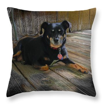 Porch Patrol Throw Pillow