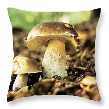 Porcini Mushrooms Throw Pillow