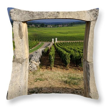 Portal  Of Vineyard.burgundy. France Throw Pillow by Bernard Jaubert