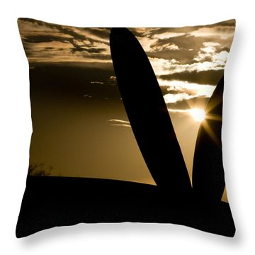 Porter Sunset Throw Pillow by Paul Job