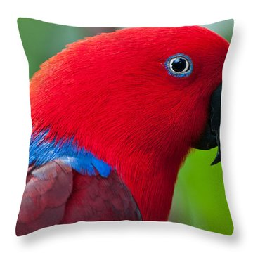 Throw Pillow featuring the photograph Portrait II by Sabine Edrissi