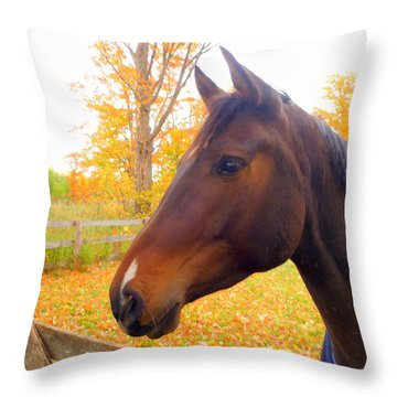 Portrait Of A Beauty Throw Pillow