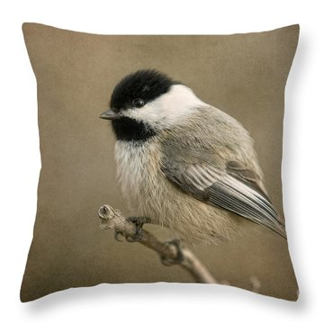 Portrait Of A Blackcapped Chickadee Throw Pillow