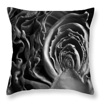 Portrait Of A Cabbage II Throw Pillow by Caitlyn  Grasso
