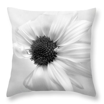 Portrait Of A Daisy Throw Pillow by Louise Kumpf