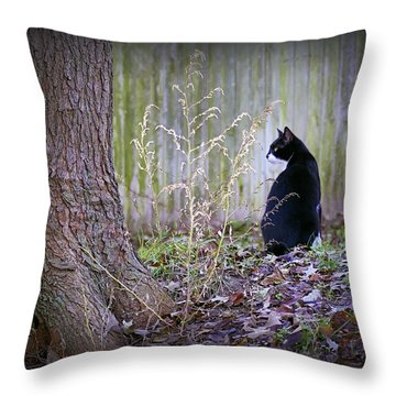 Portrait Of A Feline Throw Pillow by Brian Wallace