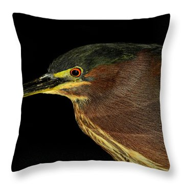 Portrait Of A Green Heron Throw Pillow