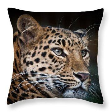 Portrait Of A Leopard Throw Pillow