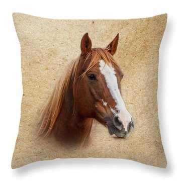 Portrait Of A Mare Print Throw Pillow by Doug Long