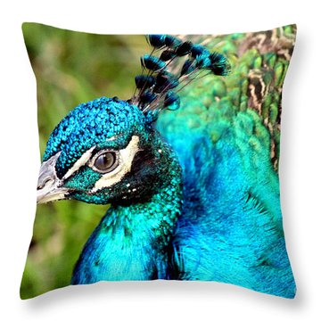 Throw Pillow featuring the photograph Portrait Of A Peacock by Kathy  White
