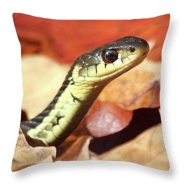 Throw Pillow featuring the photograph Portrait Of A Snake by Doris Potter