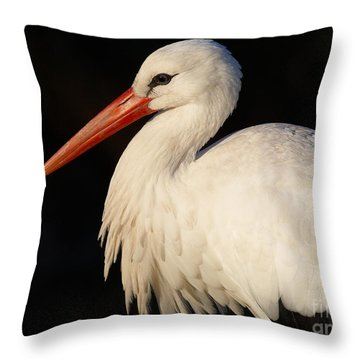 Portrait Of A Stork With A Dark Background Throw Pillow by Nick  Biemans