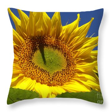 Throw Pillow featuring the photograph Portrait Of A Sunflower by Diane Miller