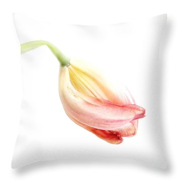 Throw Pillow featuring the photograph Portrait Of A Tulip In Yellow And Pink by Louise Kumpf
