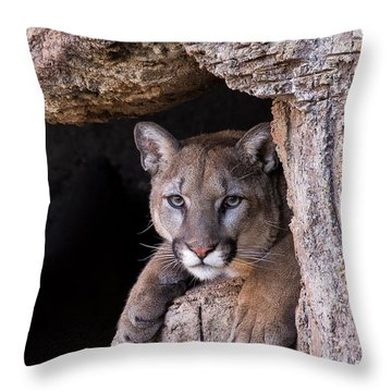 Portrait Of A Watcher Throw Pillow by Beverly Parks