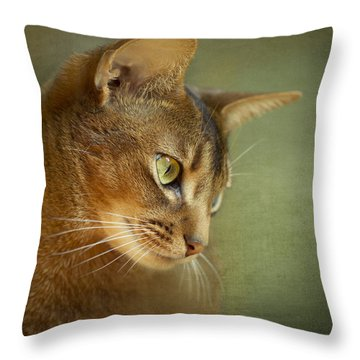 Portrait Of An Abyssinian Cat With Textures Throw Pillow